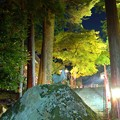 Photos: 三方石観世音2