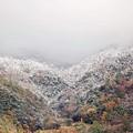 Photos: 初雪2