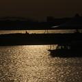 臨海公園夕景