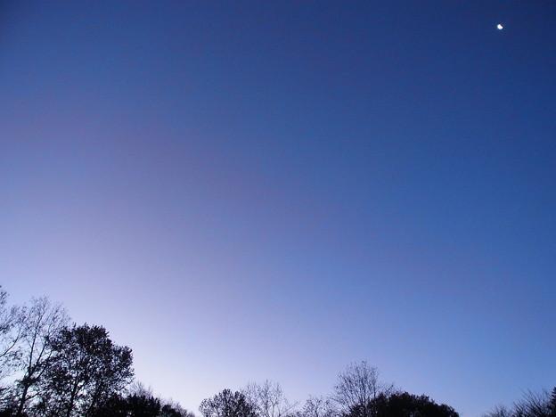 夜と朝が同居した空の下弦の月