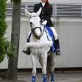 写真: 川崎競馬の誘導馬05月開催 こいのぼり青Ver-120514-12-large