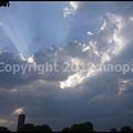 写真: P3060294
