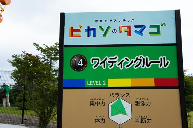 Photos: ぐりんぱ-Grinpa-:ピカソのタマゴ:ワイディングルール