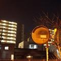 Photos: 夜散歩