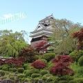 写真: 上山城 月岡公園から望む