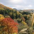Photos: 成沢城址公園~東側を望む