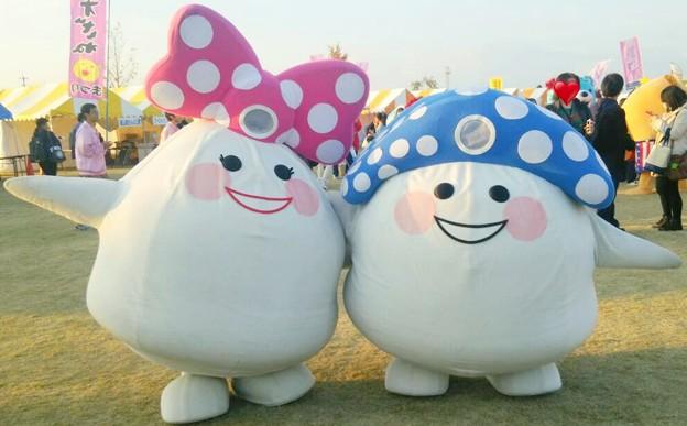 玉姫 と 玉次郎