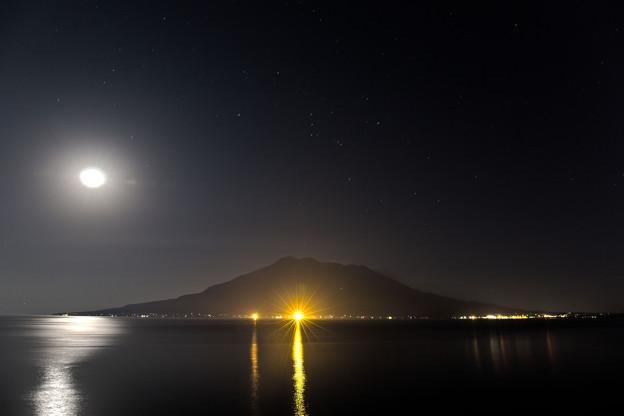 Photos: 桜島月夜