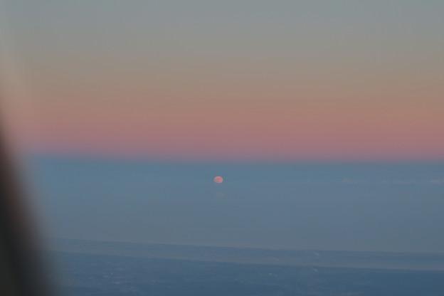 Photos: 海に浮かぶ月