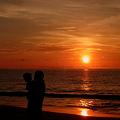 Photos: 夕日と親子
