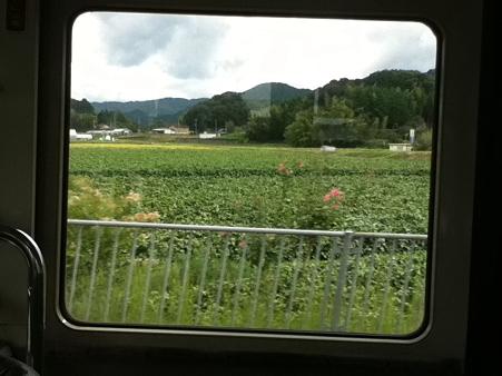 20110918バスの車窓より