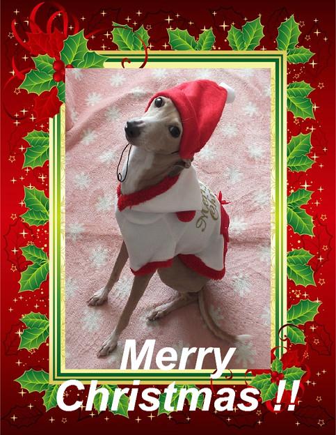 Merry Christmas. ☆*・. *☆ *・゚゚/\☆。*.