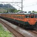Photos: 113系2000番台マリ117編成 団臨「急行伊豆号」