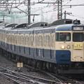 Photos: 115系300番台トタM10編成 快速むさしの2号八王子行き