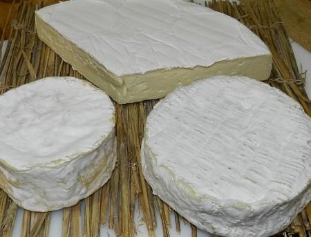 3つのブリーチーズ