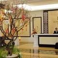 Photos: la sapinette hotel