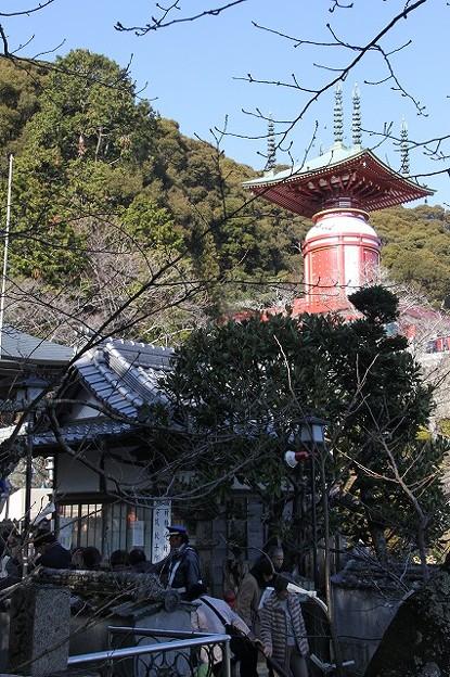 第23番札所 医王山 無量寿院 薬王寺