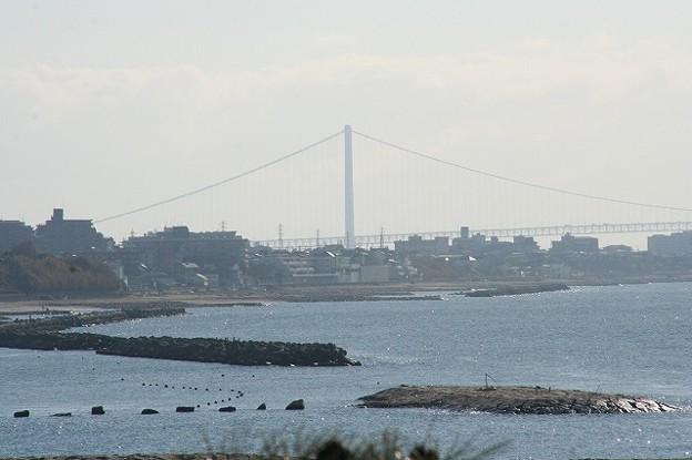 江井ヶ島からみた明石大橋(舞子アンカレイジ1A~主塔2P)