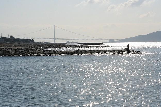 江井ヶ島からみた明石大橋(主塔3P~松帆アンカレイジ4A)