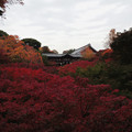 東福寺_1
