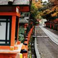 Photos: 参道