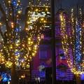 Photos: 大阪・光の饗宴