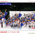 写真: 帯屋町筋_25 - 原宿表参道元氣祭 スーパーよさこい 2011