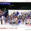 帯屋町筋_25 - 原宿表参道元氣祭 スーパーよさこい 2011