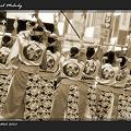写真: ちゅうしゃし隊_20 - 第11回 東京よさこい 2010