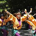 写真: 朝霞翔舞_09 - よさこい祭りin光が丘公園2011