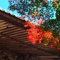写真: 永源寺