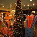 写真: ココ・コーヴのクリスマスツリー