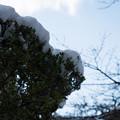 雪景色の霞ヶ城-06098