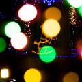 道の駅クリスマス-06064