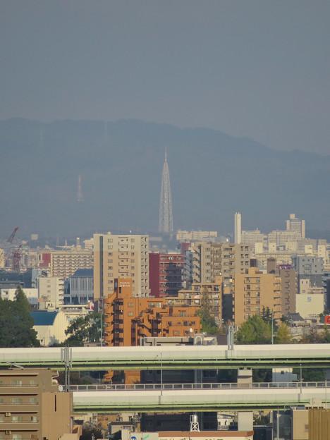 秋の名古屋城 - 24:天守閣最上階からの眺め(瀬戸デジタルタワー)