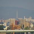 写真: 秋の名古屋城 - 24:天守閣最上階からの眺め(瀬戸デジタルタワー)