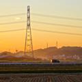 Photos: 夕暮れ時、田んぼ沿いの道を走る車