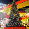 写真: アスナル金山のクリスマス・イルミネーション、今年(2014)はディズニーと提携? - 19