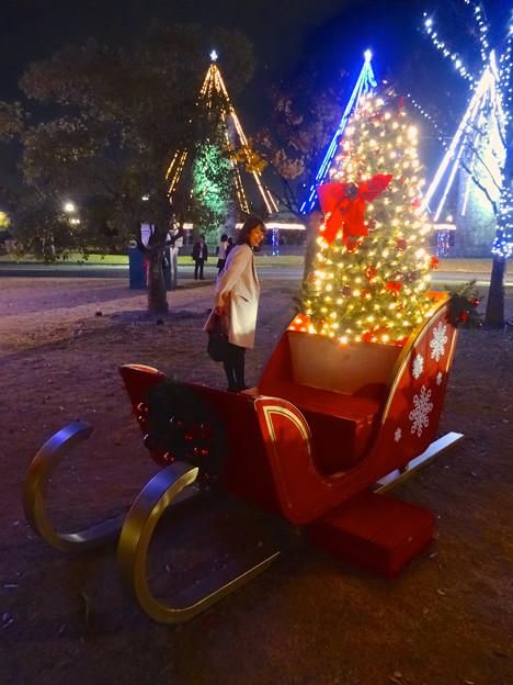 ノリタケの森のクリスマス・イルミネーション 2014 No - 41