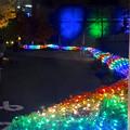 Photos: ノリタケの森のクリスマス・イルミネーション 2014 No - 42