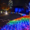 Photos: ノリタケの森のクリスマス・イルミネーション 2014 No - 44