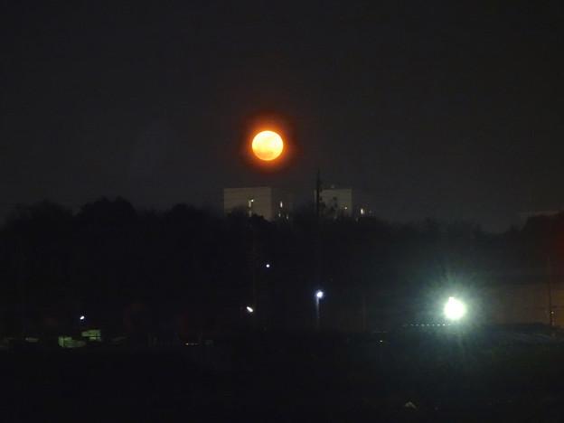 昇ったばかりで、赤みが濃い月(今年初の満月) - 1