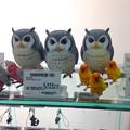 東急ハンズで売っていた鳥の置物(フクロウ、インコ)