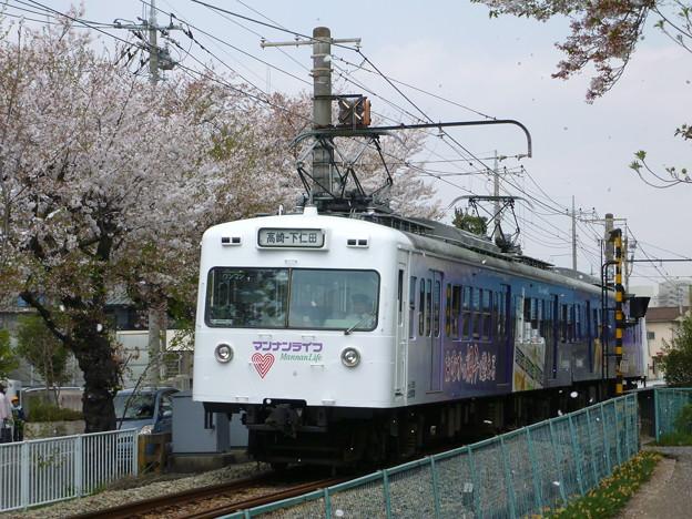 上信150形第三編成 マンナンライフ×桜