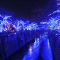 中目黒「青の洞窟」イルミネーション