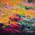 Photos: 特別公開・明月院後庭園の紅葉 #湘南 #鎌倉 #mysky #紅葉
