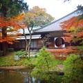 Photos: 明月院後庭園からの丸窓 #湘南 #鎌倉 #mysky #紅葉