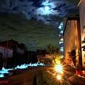 月夜の『カワノニワ』......