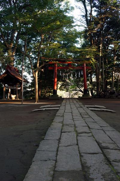 hikawa051