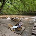 河原の茶座